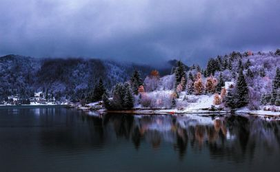 Winter Magic - Colibita by ioanabranisteanu