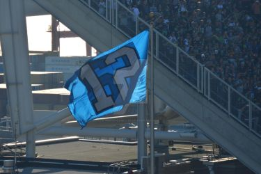 Seahawks 12th Man Flag by MindOverMiller