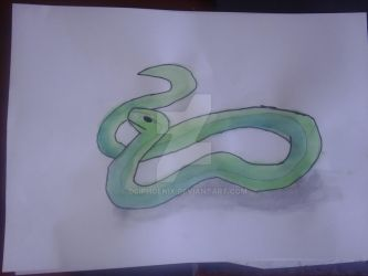 Large snake water colour  2 by dciphoenix