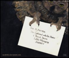 First Letter to Harry Potter by sacaklikiz