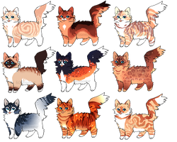 Cat Adopts 10 [CLOSED} by Chintzy-Adopts