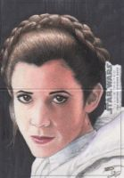 Star Wars Illustrated: TESB - Leia ARC by DenaeFrazierStudios