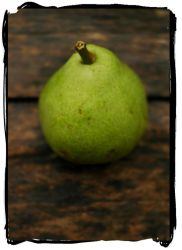 pear by ryanbellphotography