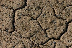 Cracked Mud with Rocks by FoxStox