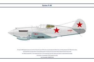 P-40C USSR 1 by WS-Clave