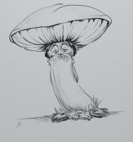 Curious old Mushroom man by Maxiator