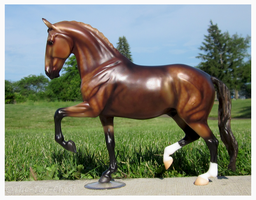 Breyer - El Capitan by The-Toy-Chest