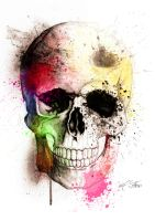 Skullcolour2 by Evlisking