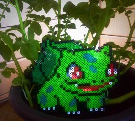 A Wild Pokemon Appears! Bulbasaur Perler by xXXxNightShadexXXx