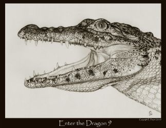 Enter the Dragon 9 by Ellygator