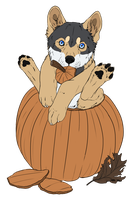 Pumpkin Puppy by TheLunaDaWolf