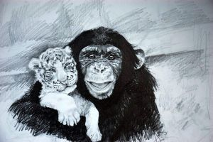 Chimp and Baby Tiger by KingVahagn