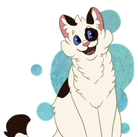 Patchpaw by Ribbon-Wren