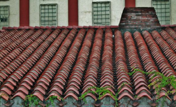 Red Roof by arrianemc