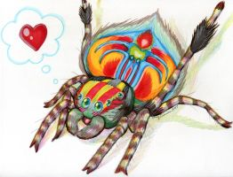 Jenny's Chibi Peacock Spider by EmilyCammisa