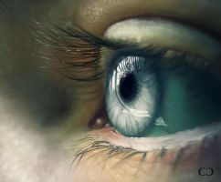 Eye Study by cdesign-art