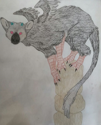 Trico by Kira1and1Light