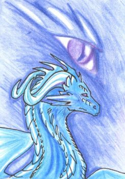 ACEO: Blue Dragon by BlaineMono