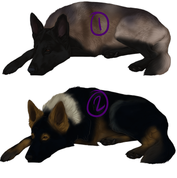Lazy Adopts by Alcemistnv