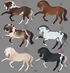 Horse_Adoptables by Dheelis