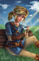 Link - Silent Princess by Laurence-L