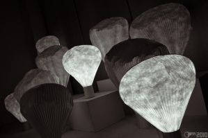 Paper lights by PiTRiS