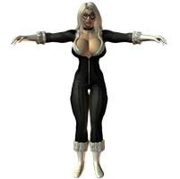 Preview: Black Cat by willdial