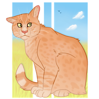 Willy the Barn Cat by Ribbon-Wren