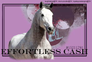 Effortless Cash by RoyalEquineDesigns