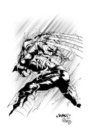 wolverine by demitri12jim inked by gz12wk