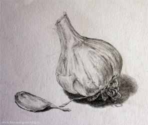 Garlic by Teries-art
