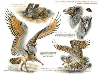 Custom Aequis: Desert Rufous-Legged Owl by pallanoph