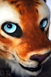 Golden tiger close-up by FarukuCostumes