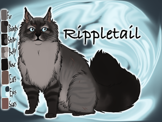 Rippletail of RiverClan - The Fourth Apprentice by Jayie-The-Hufflepuff