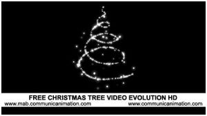 Christmas Tree Video HD by CommunicAnimation