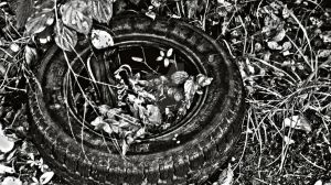 Shod Tyre by Griesli