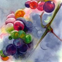 Colorful grapes by Why2be