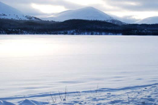 Frozen Loch Morlich by CitizenJustin