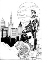 Nightwing over Gotham by SpiderGuile