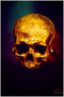 Skull by mcaksoy