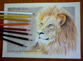 Lion by JustEyra
