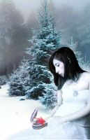 Canadian Dream -- Wintry Dream by dreamcasting88