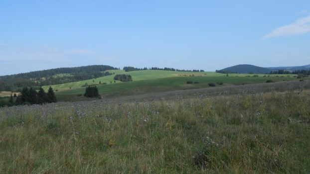 Slovakian fields by TomasGrizzly