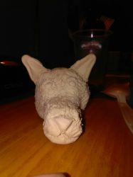 wolf head clay figure (wip)  by liongirl2289