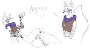 Alopex Color test (2/3) Comission by Lolipopeater by creepercreepy