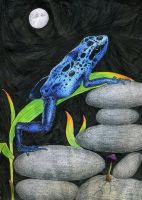 Blue Frog in Ink and CP by KCJoker33