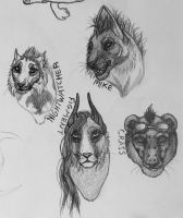 Old Chimena Headshot Requests by galianogangster