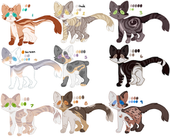 OTA CAT ADOPTS | 2 by Buff-Spud