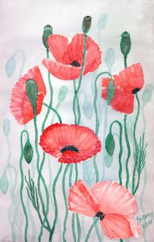 Poppies 3 by Shiaty