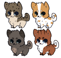 Natural Colored Puppy Adopt Auctions OPEN by SquidPup
